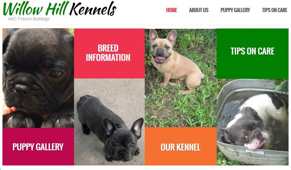 Willow Hill Kennels Home Page